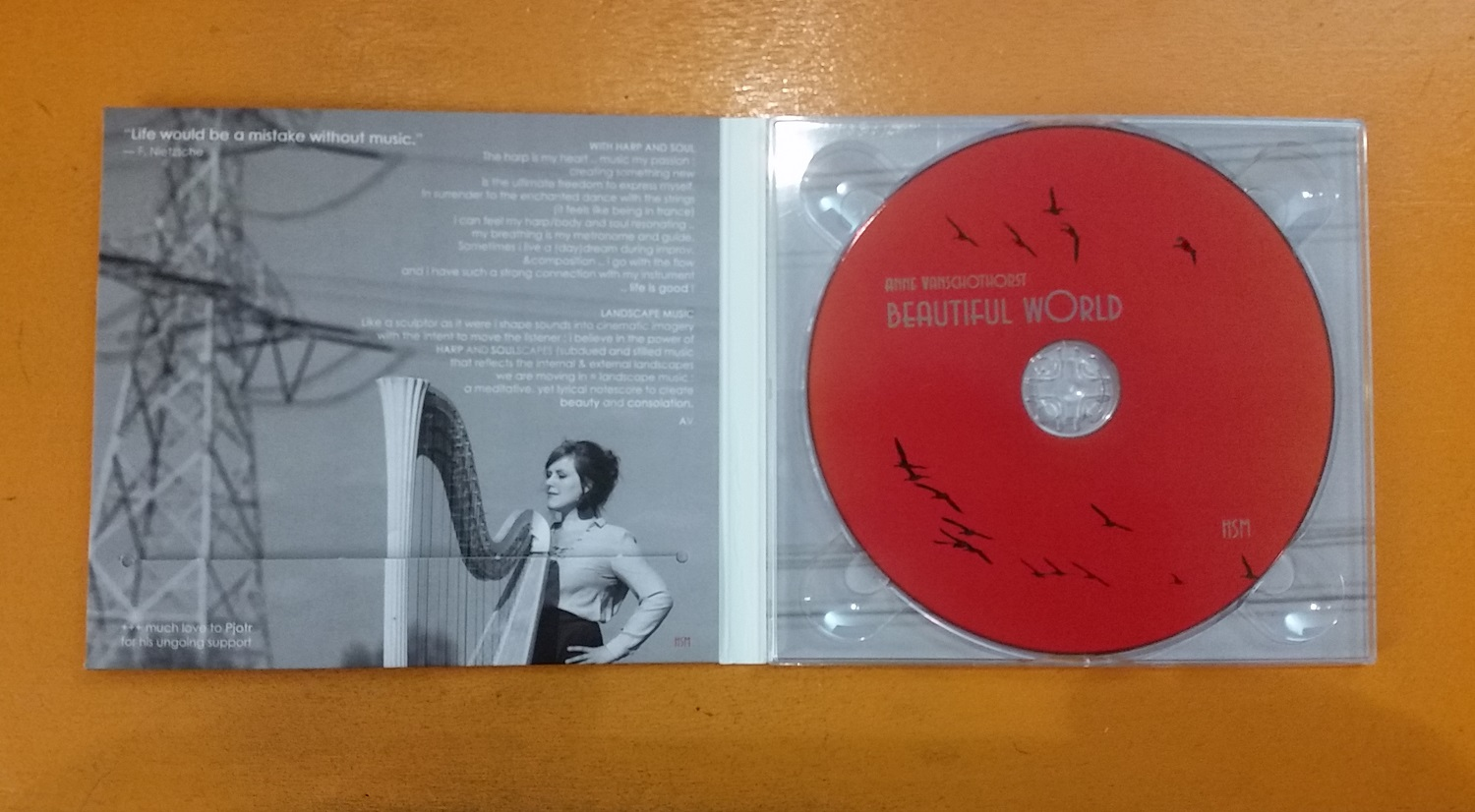 Release CD Beautiful World Anne Vanschothorst